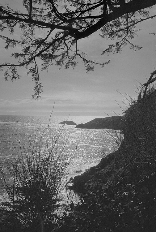 balck and white coastal photography: vancouver