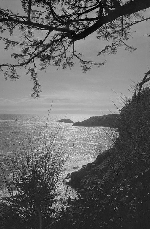 balck and white coastal photography: vancouver