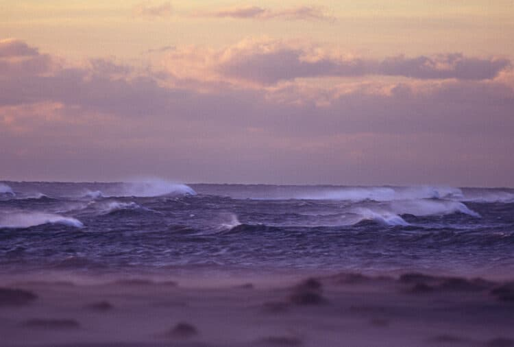 Film photographs: Cape Cod National Seashore