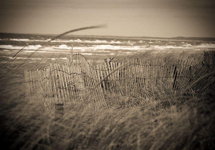 Wind Blown